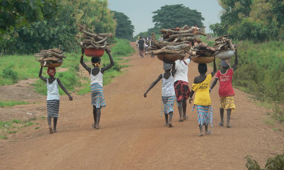 NIños cargando madera